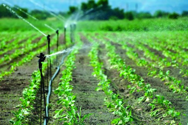 Analisi dell'acqua per l'irrigazione